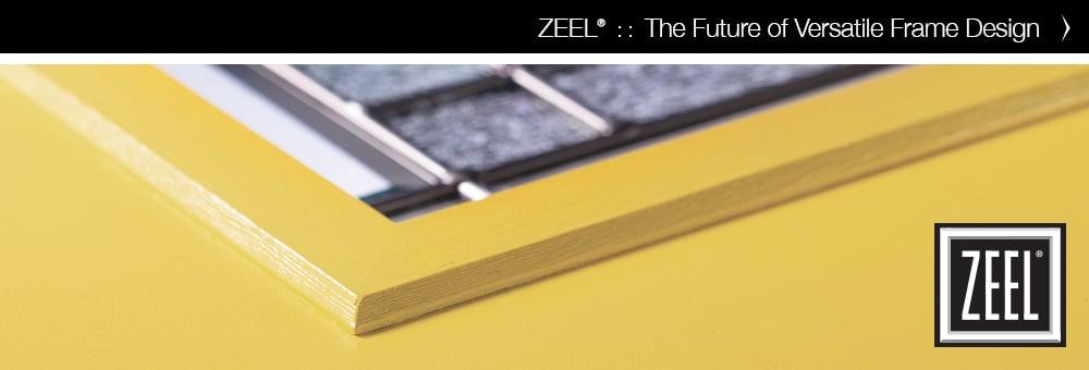 Zeel-2019